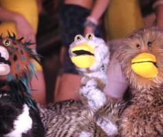 "Ephwurd – ""Duckface"""